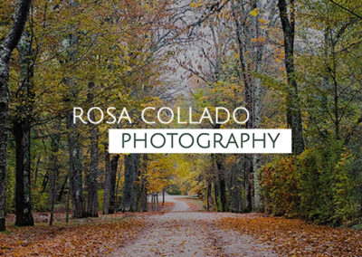 Rosa Collado Photography